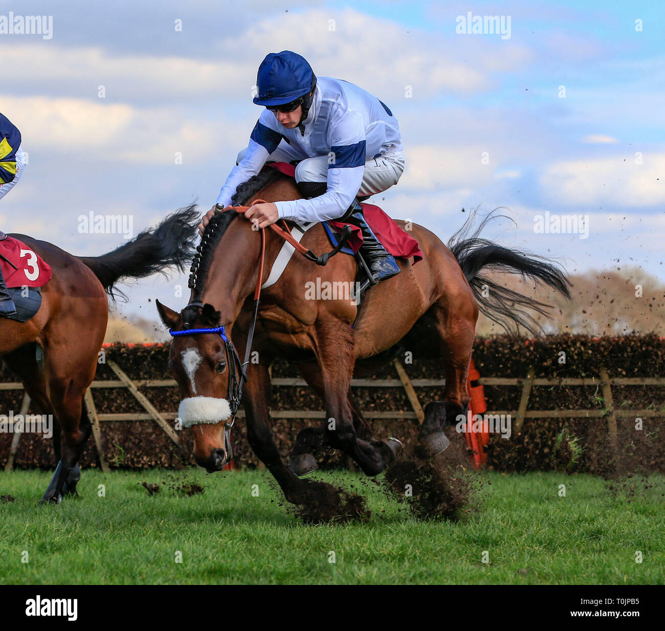 Haydock Park Racecourse, Merseyside, UK  20th Mar, 2019  Horse