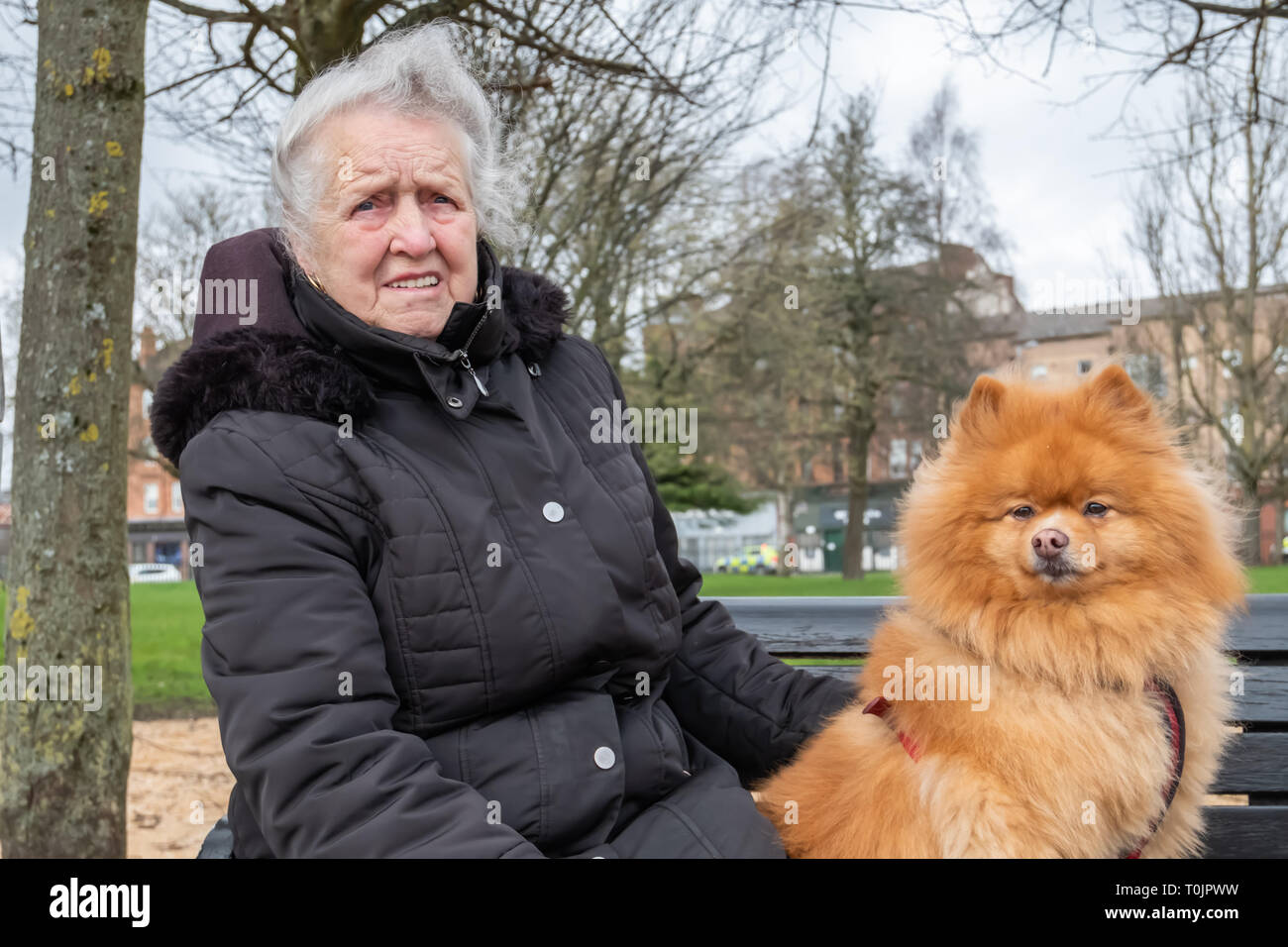 Glasgow, Scotland, UK. 20th March, 2019. UK Weather. A female dog owner sitting on a park bench alongside her pet pomeranian dog called Alfie enjoying  the mild weather in Glasgow Green. Credit: Skully/Alamy Live News - Stock Image