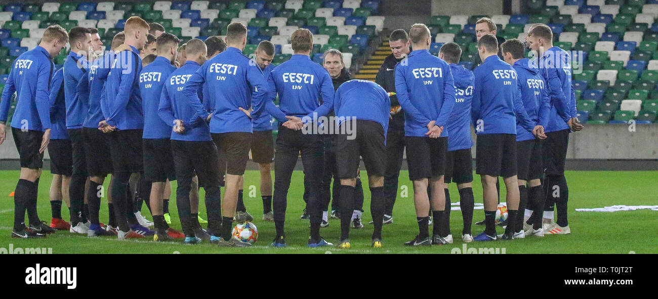 Windsor Park Belfast, Northern Ireland, UK. 20 March 2019. The Estonia squad train at Windsor Park before their opening game against Northern Ireland tomorrow night. Estonia head coach Martin Reim at the session. Credit: David Hunter/Alamy Live News. - Stock Image