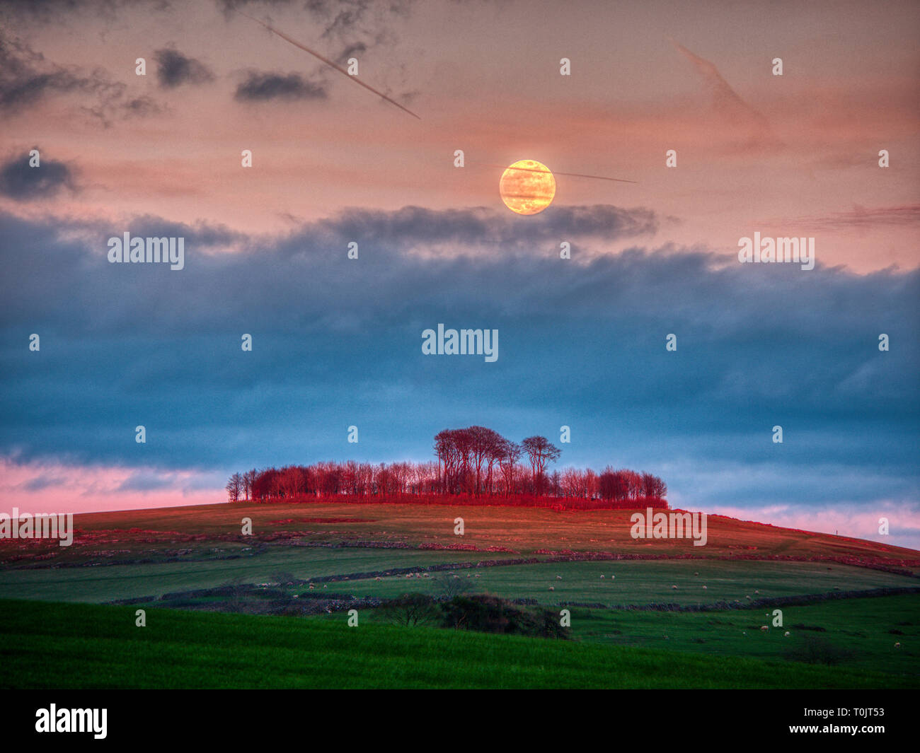 Minning Low Neolithic cairn, Derbyshire, UK. 20th Mar, 2019. Supermoon & equinox, rare lunar phenomenon of the large super warm moon coinciding with spring equinox Minninglow hill Historic England monument with a chambered tomb & two bowl barrows Credit: Doug Blane/Alamy Live News - Stock Image