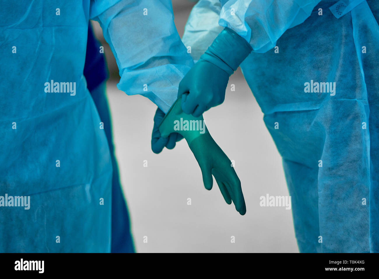 Assistant helps the surgeon put on latex gloves before the operation. A team of surgeons in the operating lamp background preparing for surgery - Stock Image