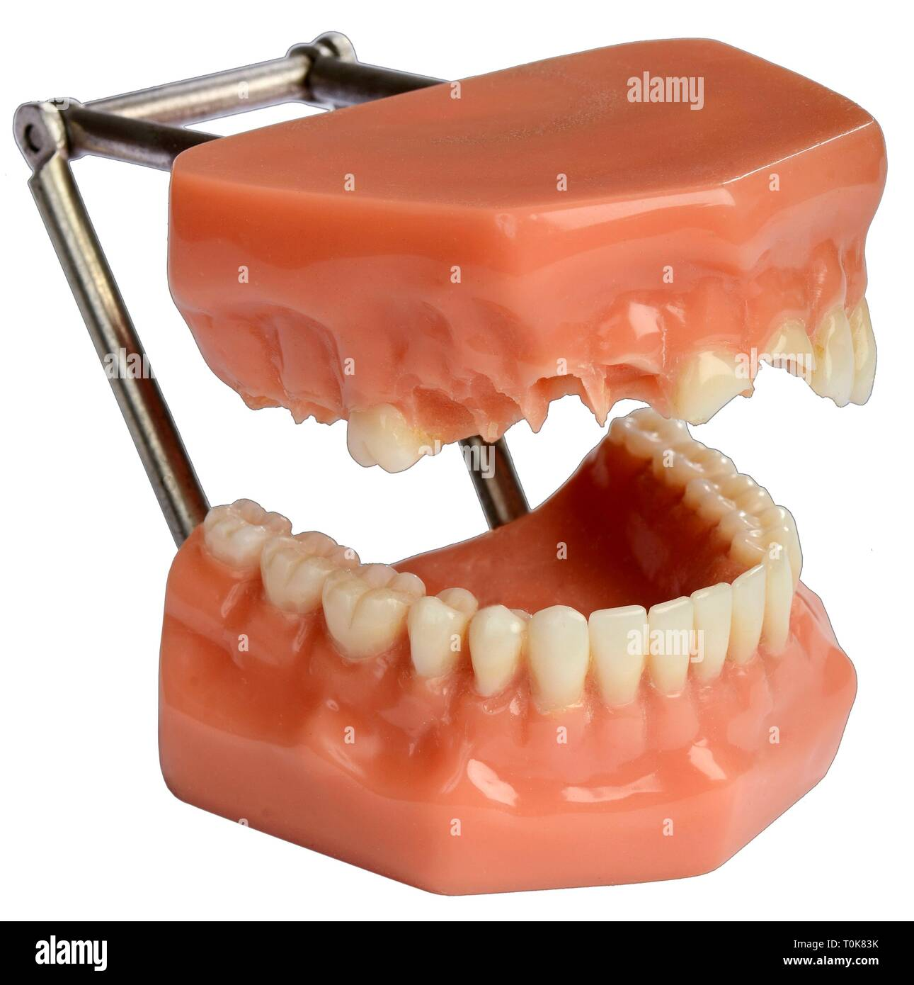 medicine, dentistry, incomplete teeth, mock-up, Germany, circa 1995, Additional-Rights-Clearance-Info-Not-Available - Stock Image