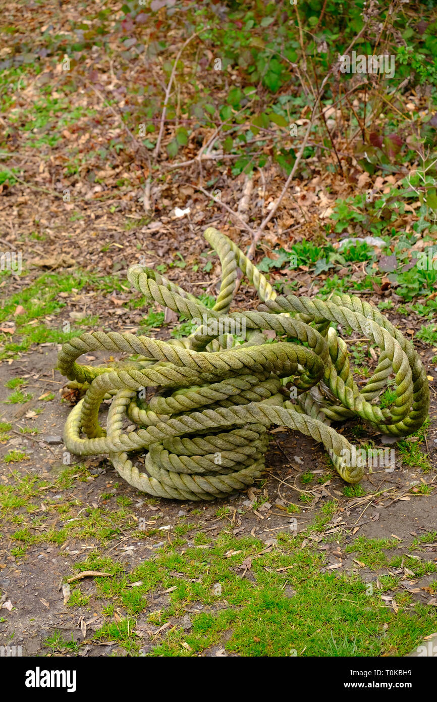 Sturdy rope coiled with green grass staining - Stock Image