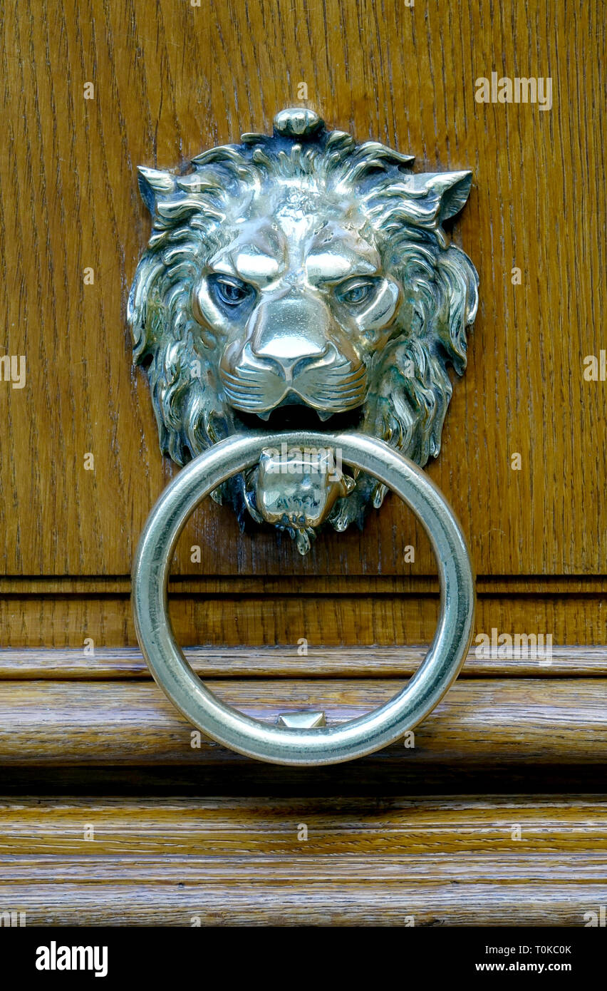 Close Up Of A Silver Lion Head Door Knock On A Wooden Heavy ...
