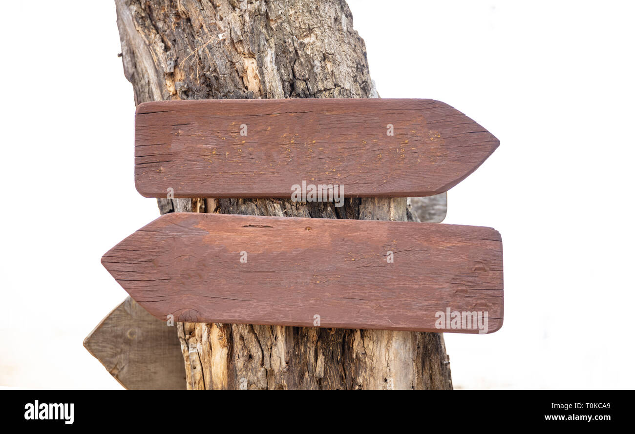 Opposite directions arrow signs. Two blank wooden pointers on a tree trunk, closeup view, space for text - Stock Image