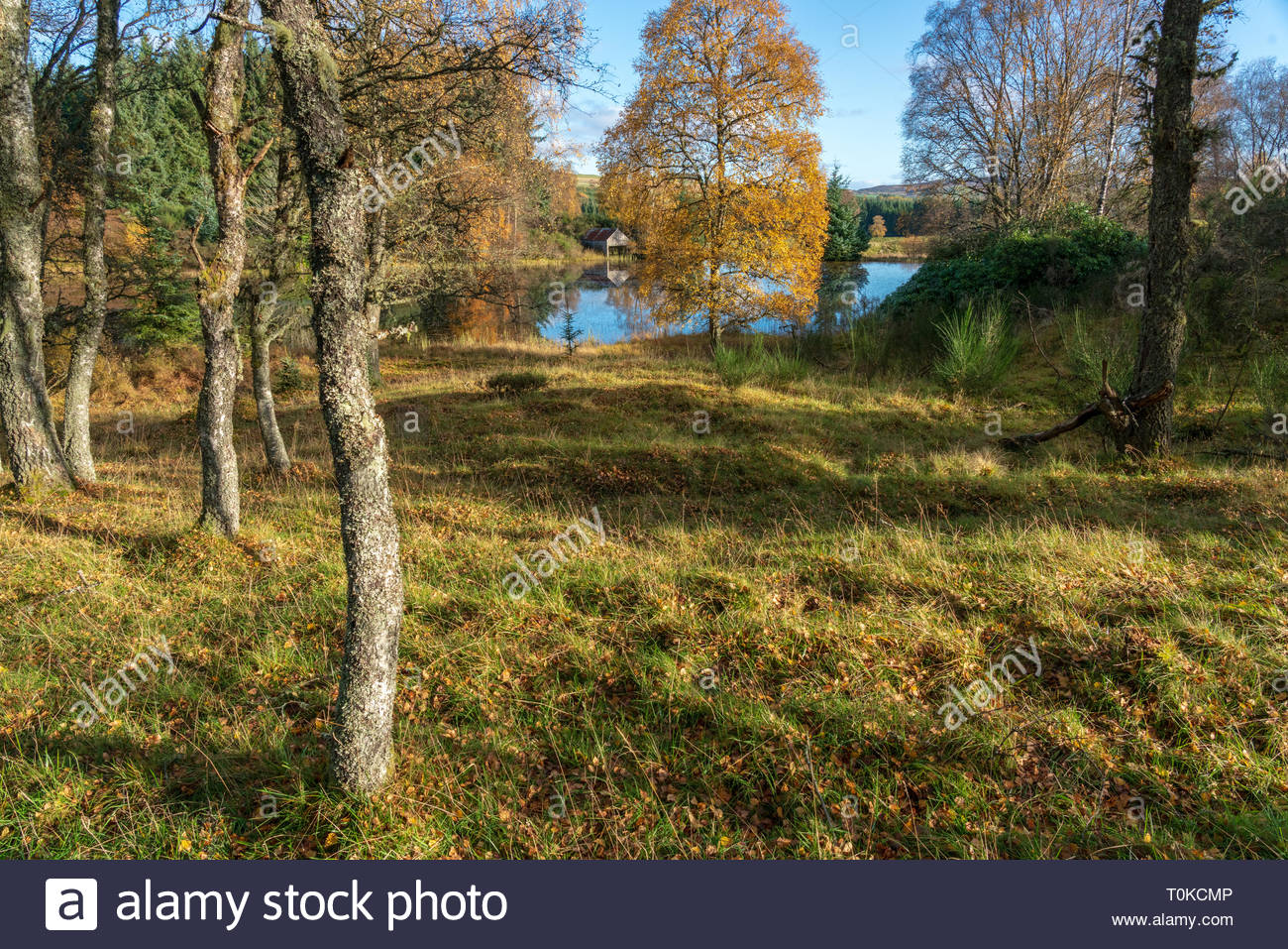 Abandoned boat house and lake in the countrside in Perthshire, Scotland during autumn Stock Photo