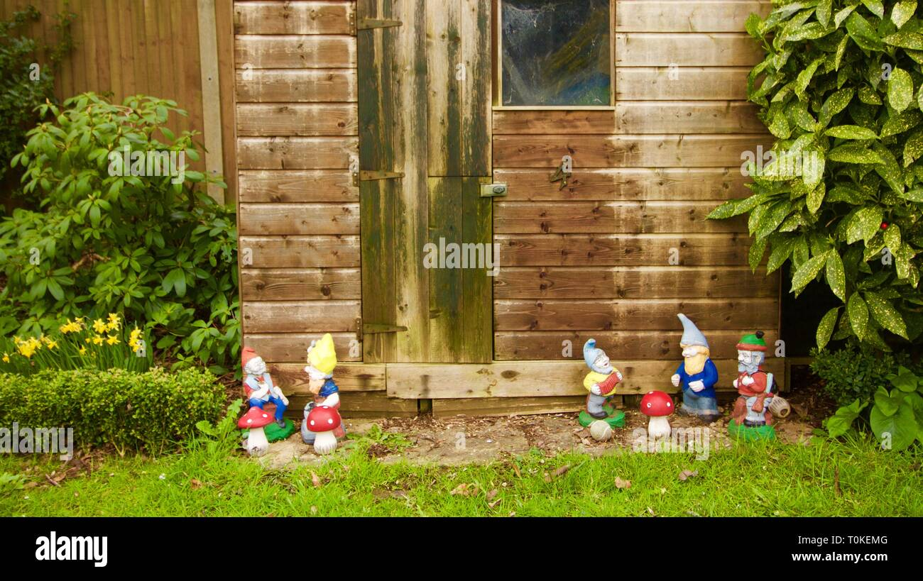 Garden shed with old fashioned garden gnomes lines up outside - Stock Image