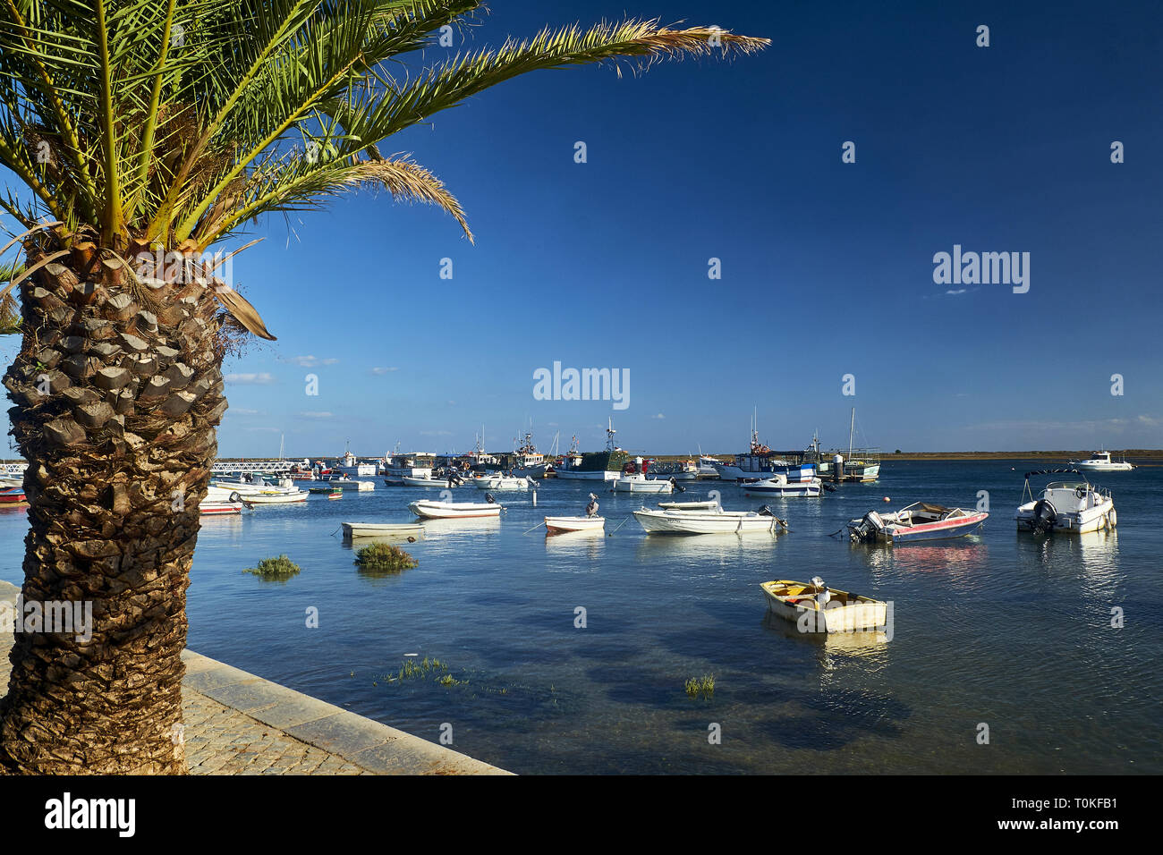Fishing boats in Santa Luzia near Tavira, Fraro, Algarve, Portugal Stock Photo