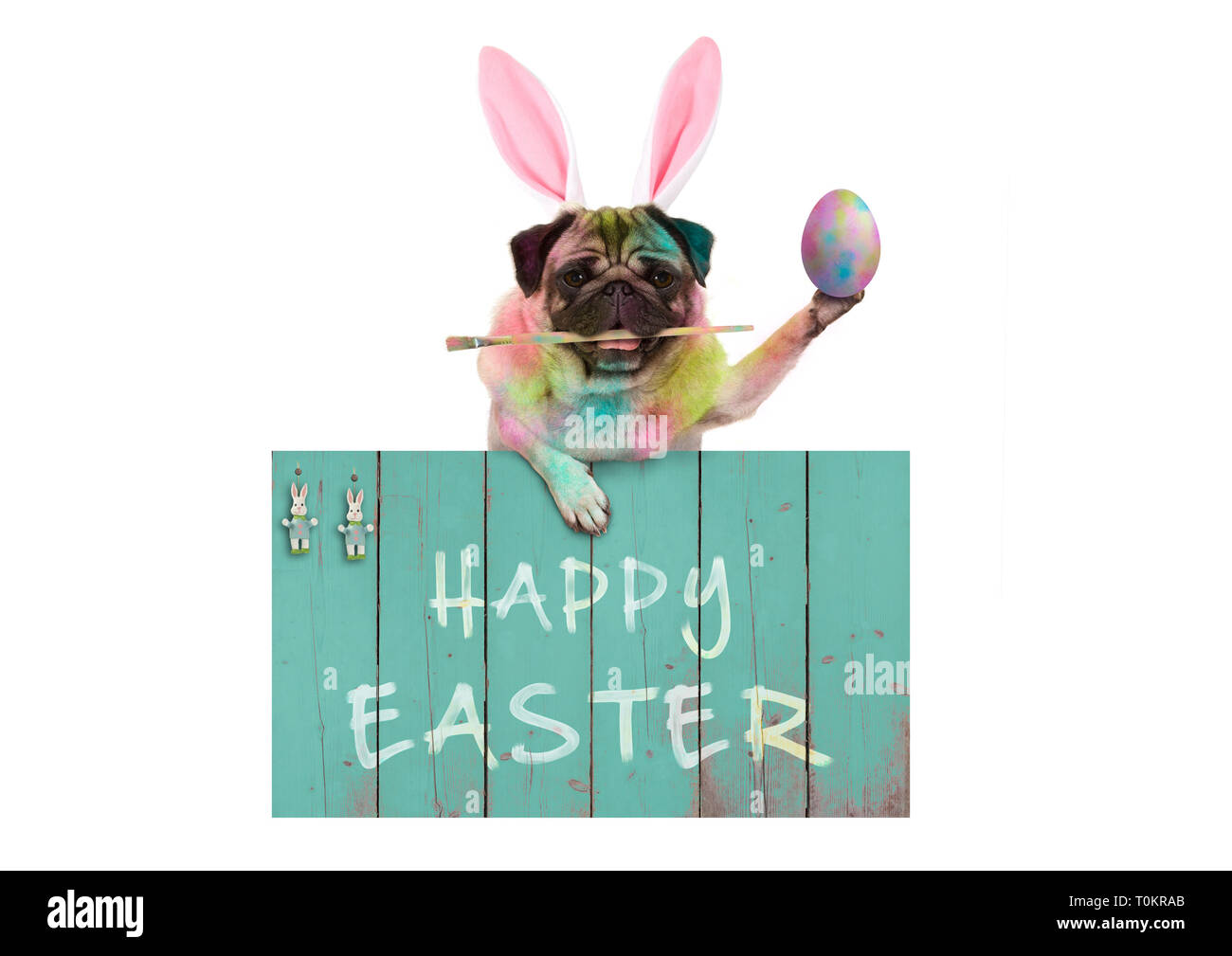 colorful easter pug dog bunny painting easter eggs with paintbrush, hanging on vintage wooden sign with text happy easter, isolated on white backgroun Stock Photo