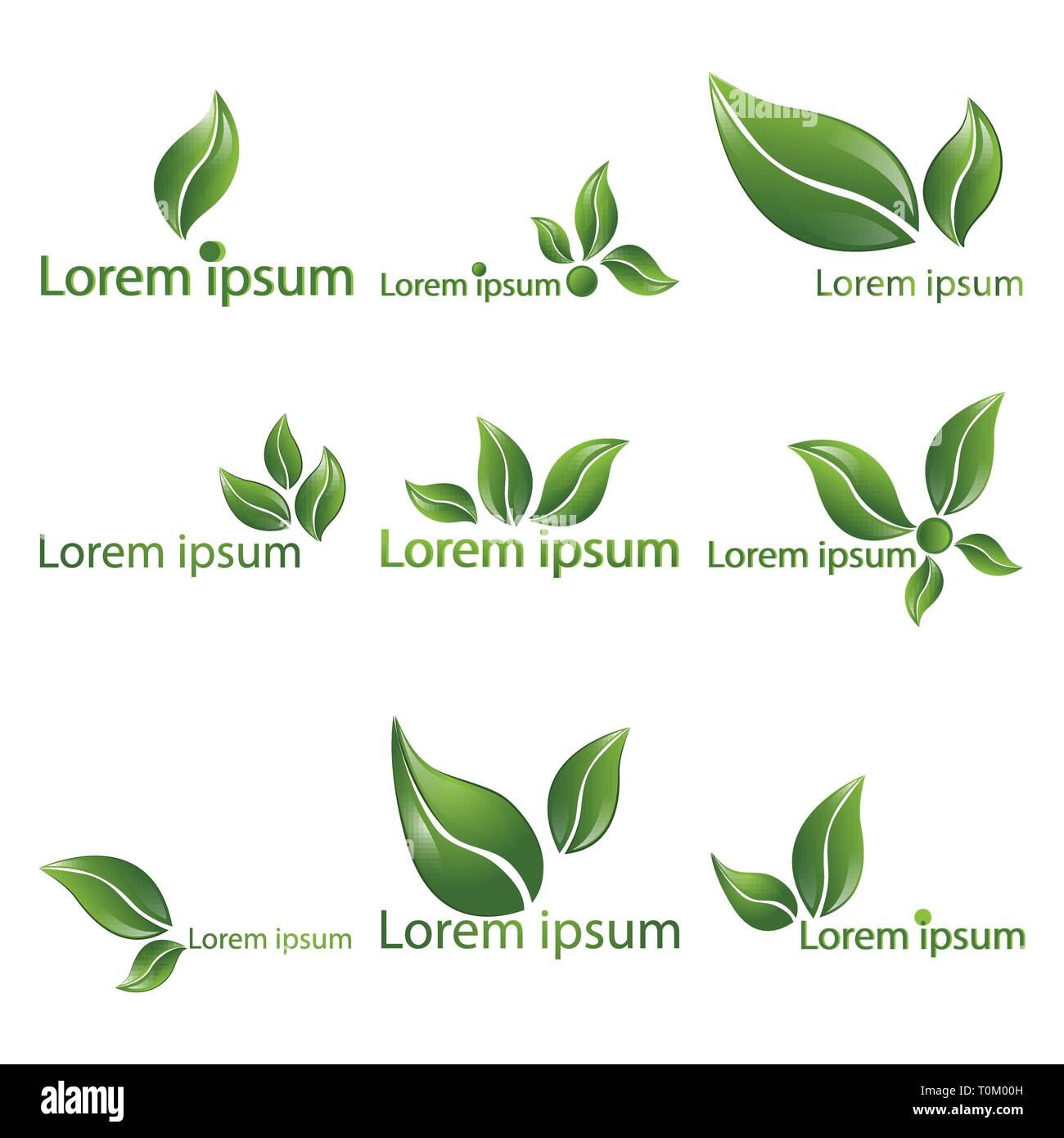 Leaf  realistic vector logotypes,  logo set of nine beautiful nature sign, spring time , for spa, organic  food or alternative medicine center web and - Stock Image