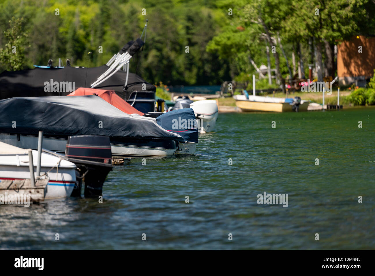 Motorboats docked on a lake in Ontario Canada's Cottage Country on a summer afternoon. Stock Photo