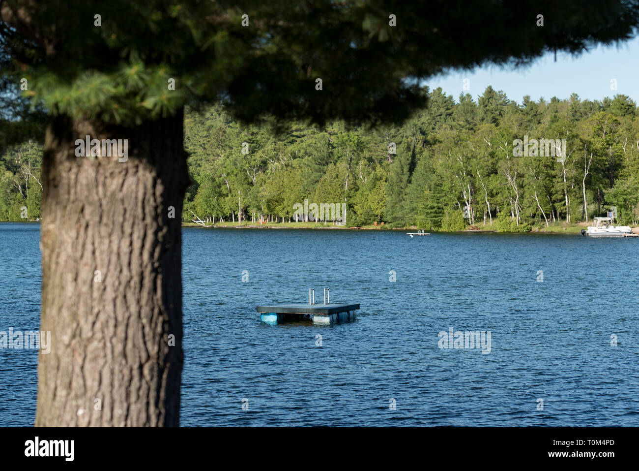 Floating docks on a lake in Ontario Canada's Cottage Country on a summer evening. - Stock Image
