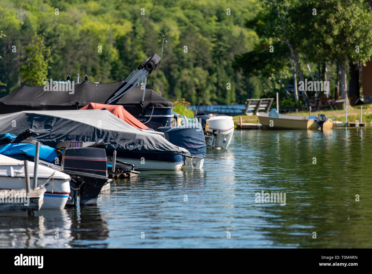Motorboats docked on a lake in Ontario Canada's Cottage Country on a summer morning. - Stock Image