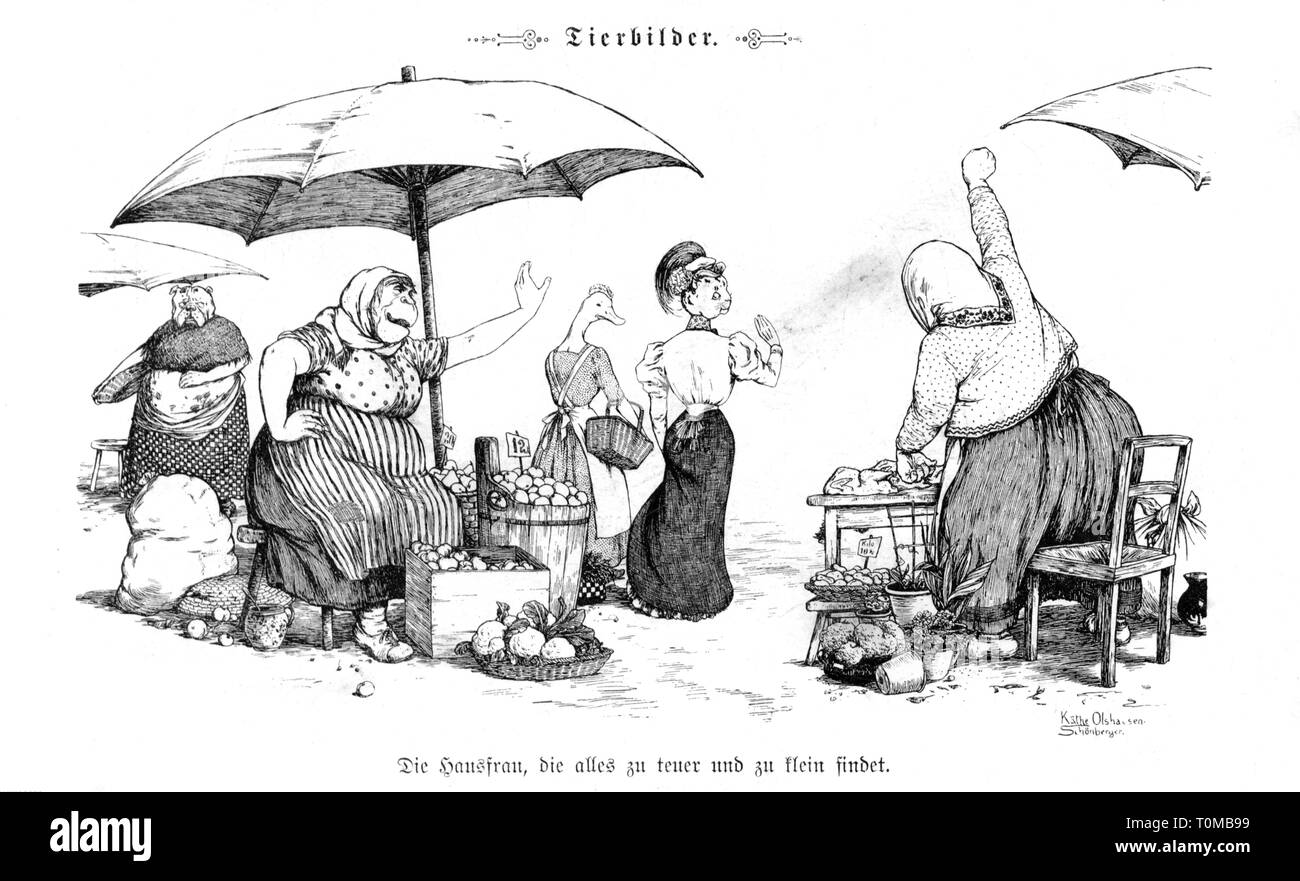 caricature, 'Die Hausfrau, die alles zu teuer und zu klein findet' (The Housewife Who Thinks Everything is too Expensive or too Small), drawing by Käthe Olshausen-Schönberger (1881 - 1968), out of: 'Fliegende Blätter', Munich, 1906, Artist's Copyright has not to be cleared - Stock Image