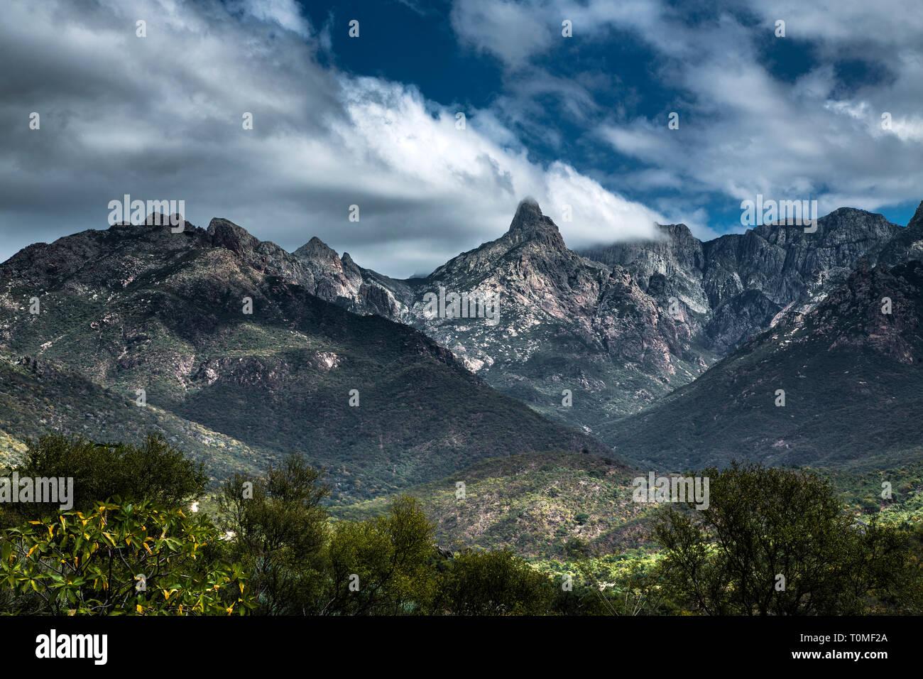 Hajhir mountains, Socotra island, Yemen - Stock Image