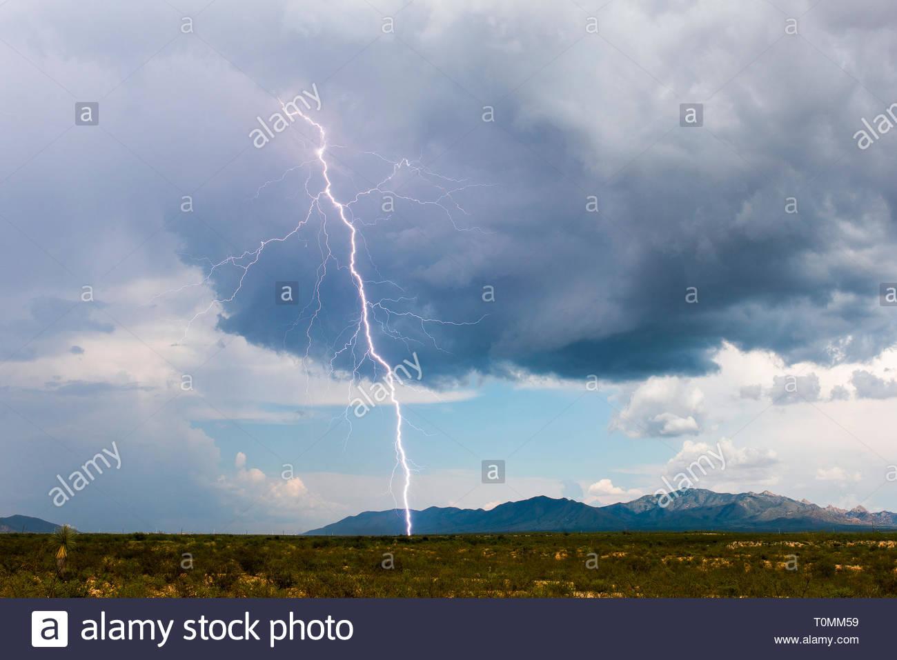 Blitzschlag bei Tageslicht am 08.08.2018 nahe der Dragoon Mountains, Cochise County, Arizona, USA|Lightning strike in daylight on 08.08.2018 near Drag - Stock Image