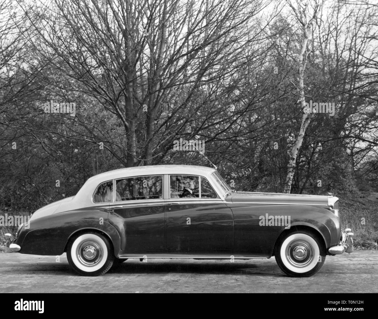 Bentley Continental Flying Spur Limousine By Exotic Limo: 50s Bentley Stock Photos & 50s Bentley Stock Images