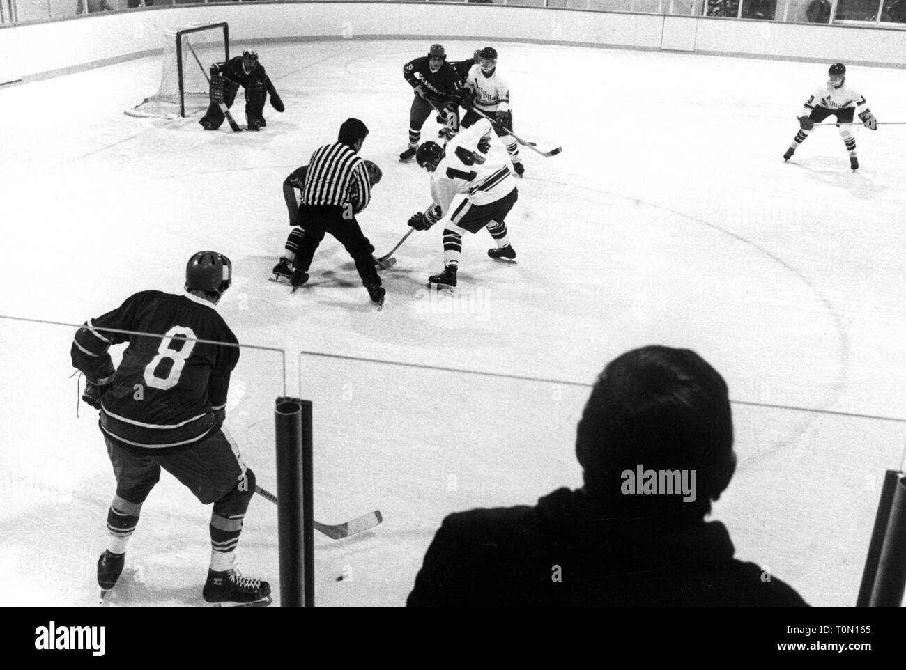 sports, winter sports, ice hockey, game, faceoff in front of the goal, North America, 1970s, Additional-Rights-Clearance-Info-Not-Available - Stock Image