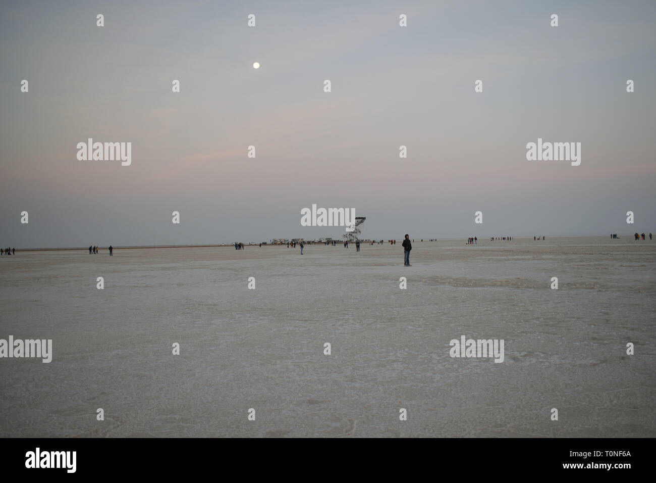 White dessert at Rann of Kutch, Gujarat, India - Stock Image