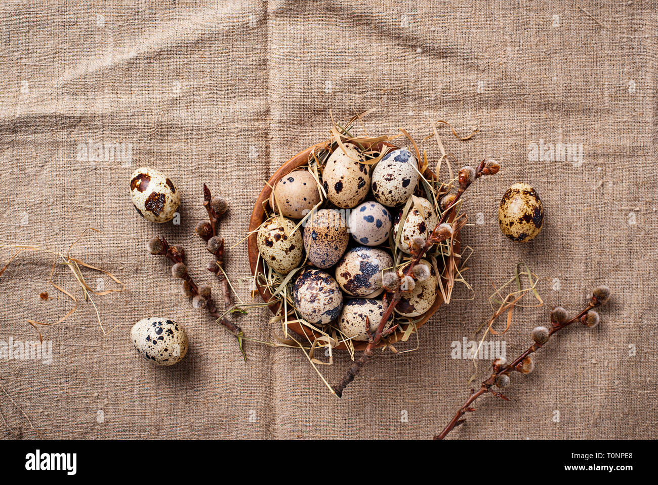 Quail eggs on linen background - Stock Image