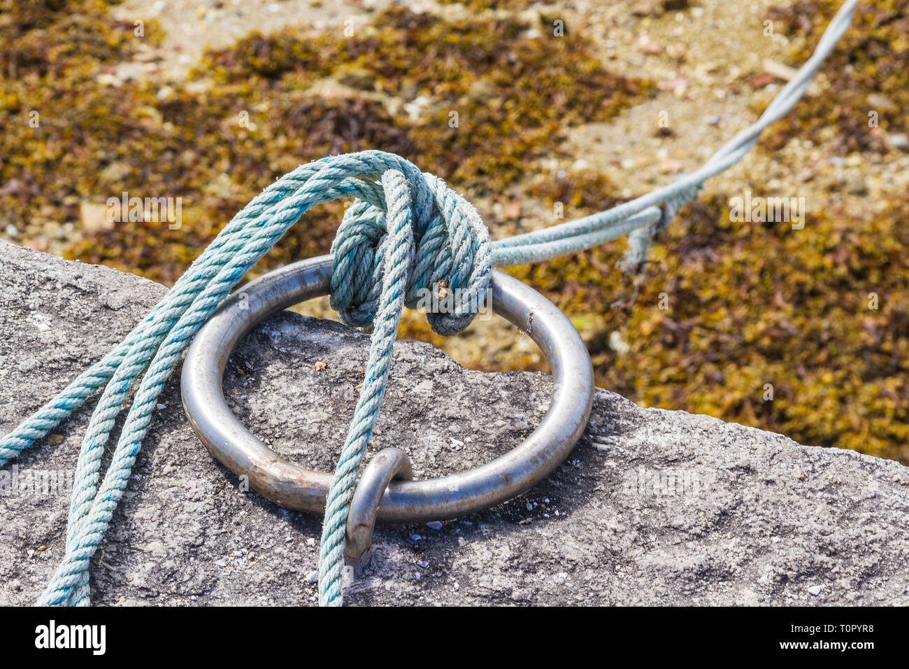 Sailor Knot On Stainless Steel Ring In The Fishing Harbor Stock Photo Alamy