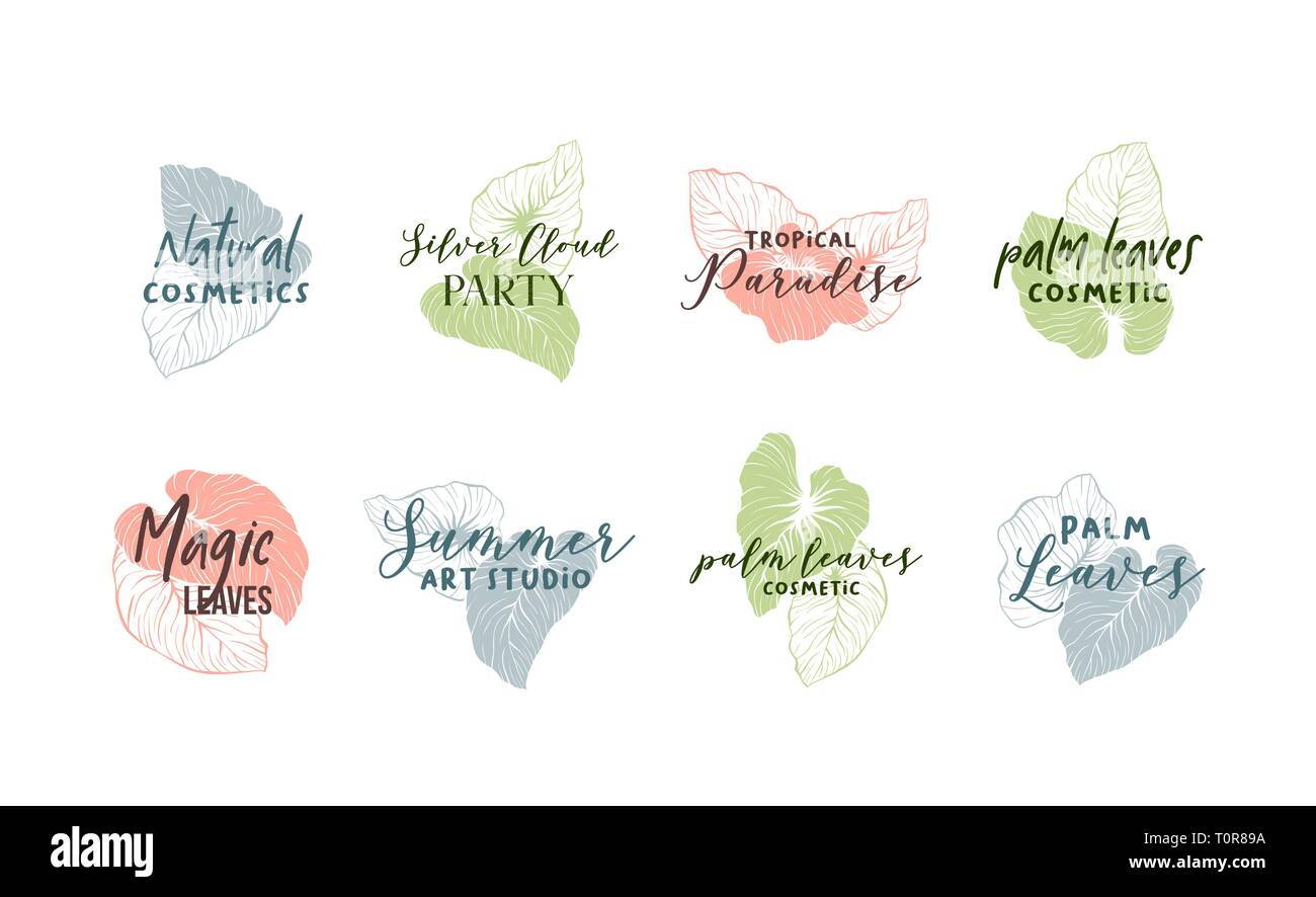 Palm leaves logo template set. Calligraphic logotypes pack. Organic, natural cosmetics store, summer art studio sign. Exotic, tropical monstera minimalistic drawing. Handwritten cursive lettering - Stock Vector
