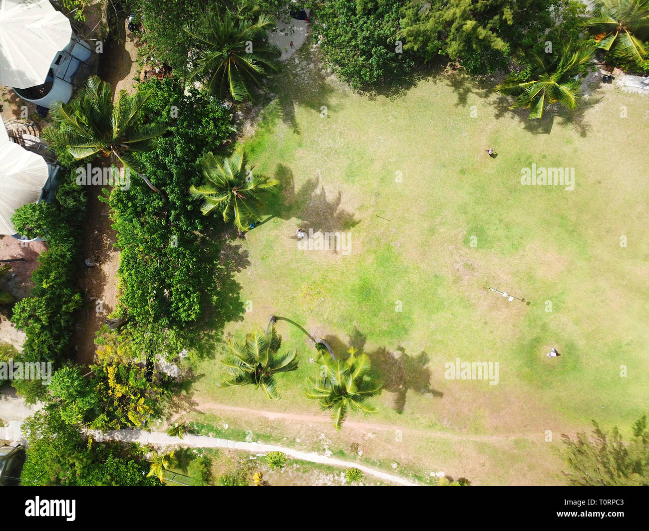 Aerial photo of a park at the Seychelles - Stock Image