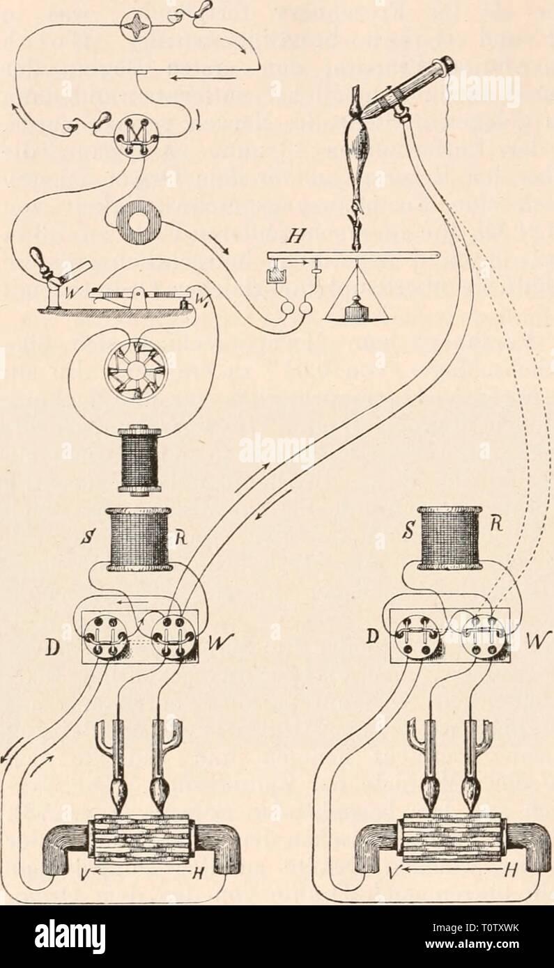 Elektrophysiologie (1895) Elektrophysiologie  elektrophysiolog00bied Year: 1895  812 Die elektrischen Fische. aperiodischen Magneten entwickelten Formel T= ^ x, worin F die Ablenkung durch den stetig fliessenden Strom, (e) die Basis der natürlichen Logarithmen, (x) den durch den Stromstoss erzeugten Aus- schlag und (tmax) die Dauer dieses oder eines beliebigen an- dern Ausschlages unter denselben Umständen bedeutet. So fand Sachs einen Werth von 0,00350', der, wie man sieht, mit dem von Gad für das Muskel- element angenom- menen Werth des Latenzstadiums nahe übereinstimmt. Gotch bestimmte dass Stock Photo