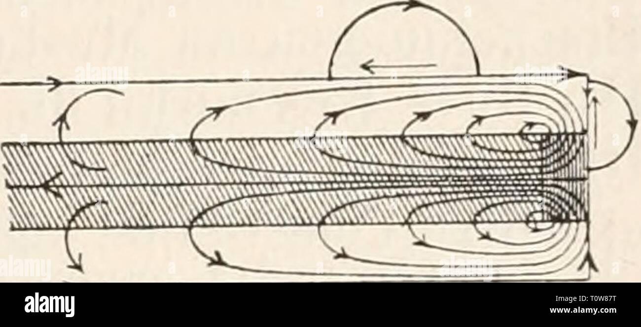 Elektrophysiologie (1895) Elektrophysiologie  elektrophysiolog00bied Year: 1895  Die elektromotorischen Wirkungen der Nei-ven. 707 Stromstärke und Stromesdauer an der physiologischen Kathode, d. h. an jedem Punkte, wo der Strom aus der erregbaren Substanz austritt, während der Schliessungszeit ein Zustand erhöhter Anspruchsfähigkeit besteht, während das Umgekehrte an der physiologischen Anode der Fall ist, so ergiebt sich unmittelbar auch ein Verständniss für die Thatsache der intra- und extrapolar sich ausbreitenden polar-antago- nistischen Erregbarkeitsänderungen eines polarisirten markhalti Stock Photo