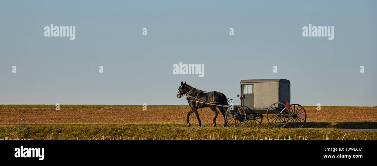 An Amish-owned horse and buggy make their way down a rural road in Lancaster County, Pennsylvania, USA during the grey of winter - Stock Image