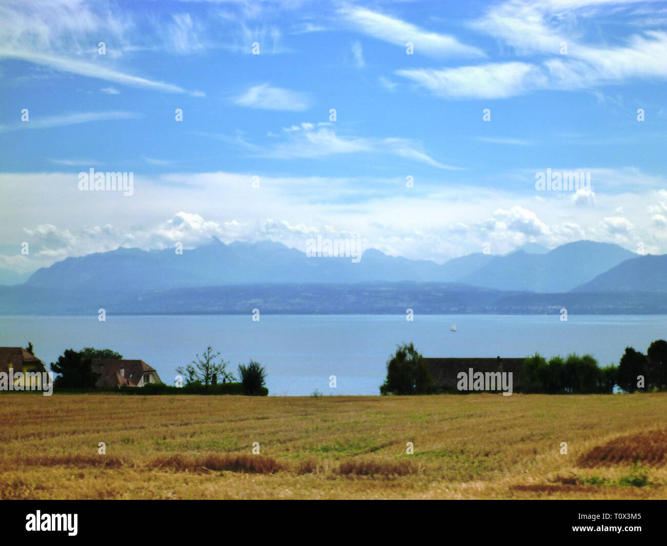 Scenery on the Lake Leman - Swiss. View of the french Alps in background - Stock Image