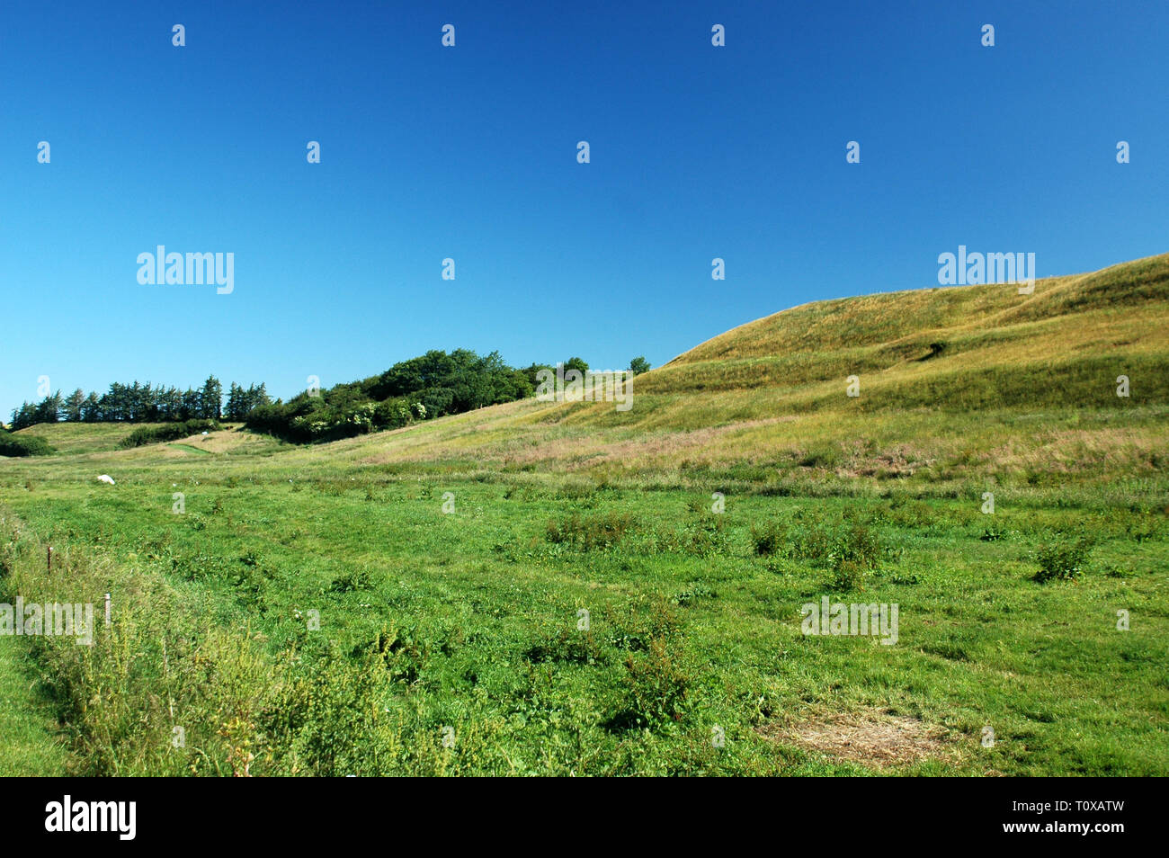 Sloped landscape, formed by a subglacial stream trench during ice age. - Stock Image
