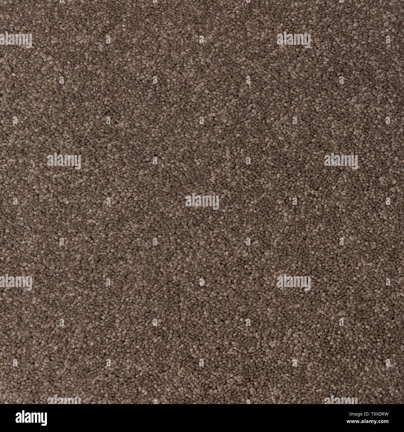 Texture of coloured carpet with short pile - Stock Image