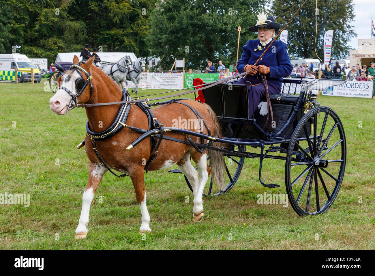 Pony and trap display and competition at the 2018 Aylsham Agricultural Show, Norfolk, UK. - Stock Image