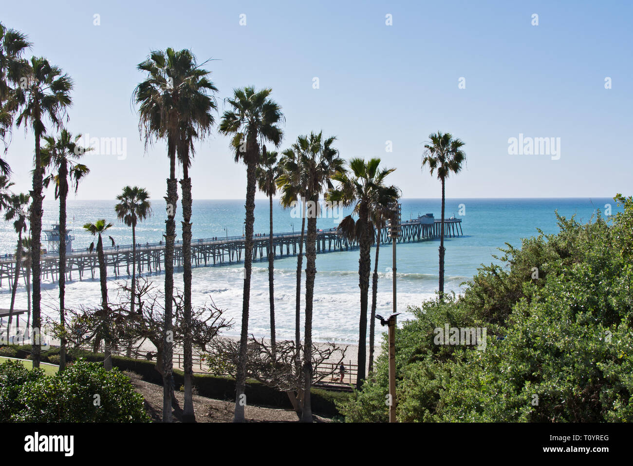 The image shows the pier during the day with palm trees seen from Parque Del Mar. It was built in 1928 with a length of about 395 meters. Stock Photo