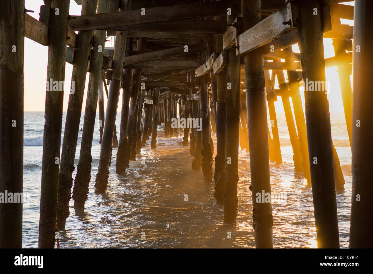 The image shows the  the wooden structure underneath the pier. It was built in 1928 with a length of about 395 meters. Stock Photo