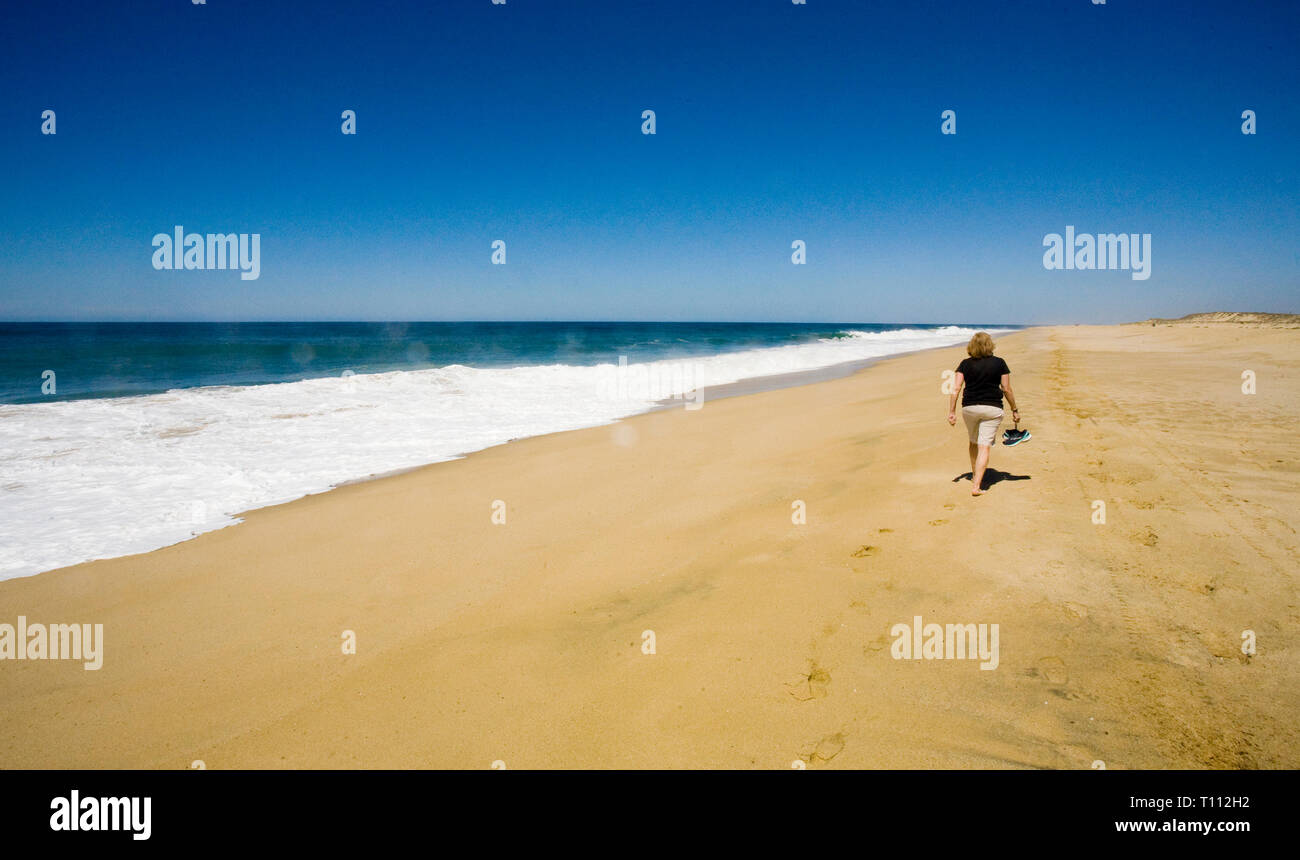An American tourist strolls along a rugged and remote beach on the Pacific Ocean, on the west coast of Baja, Mexico near the resort town of Todos Sant - Stock Image