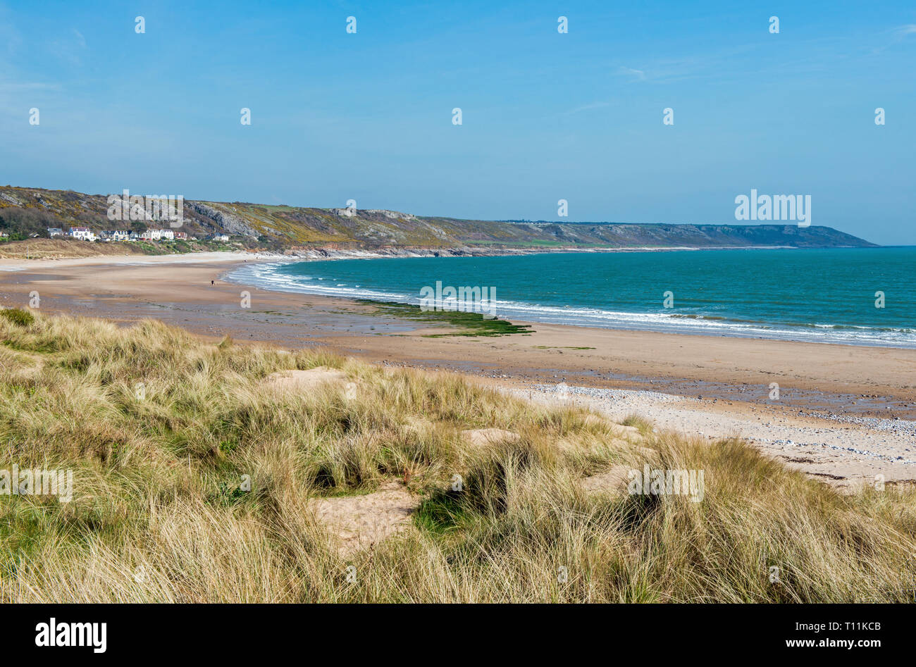 Port Eynon and Horton Beaches on the Gower coast South Wales UK. All the Gower peninsula is an Area of Outstanding Natural Beauty, the first in the UK - Stock Image