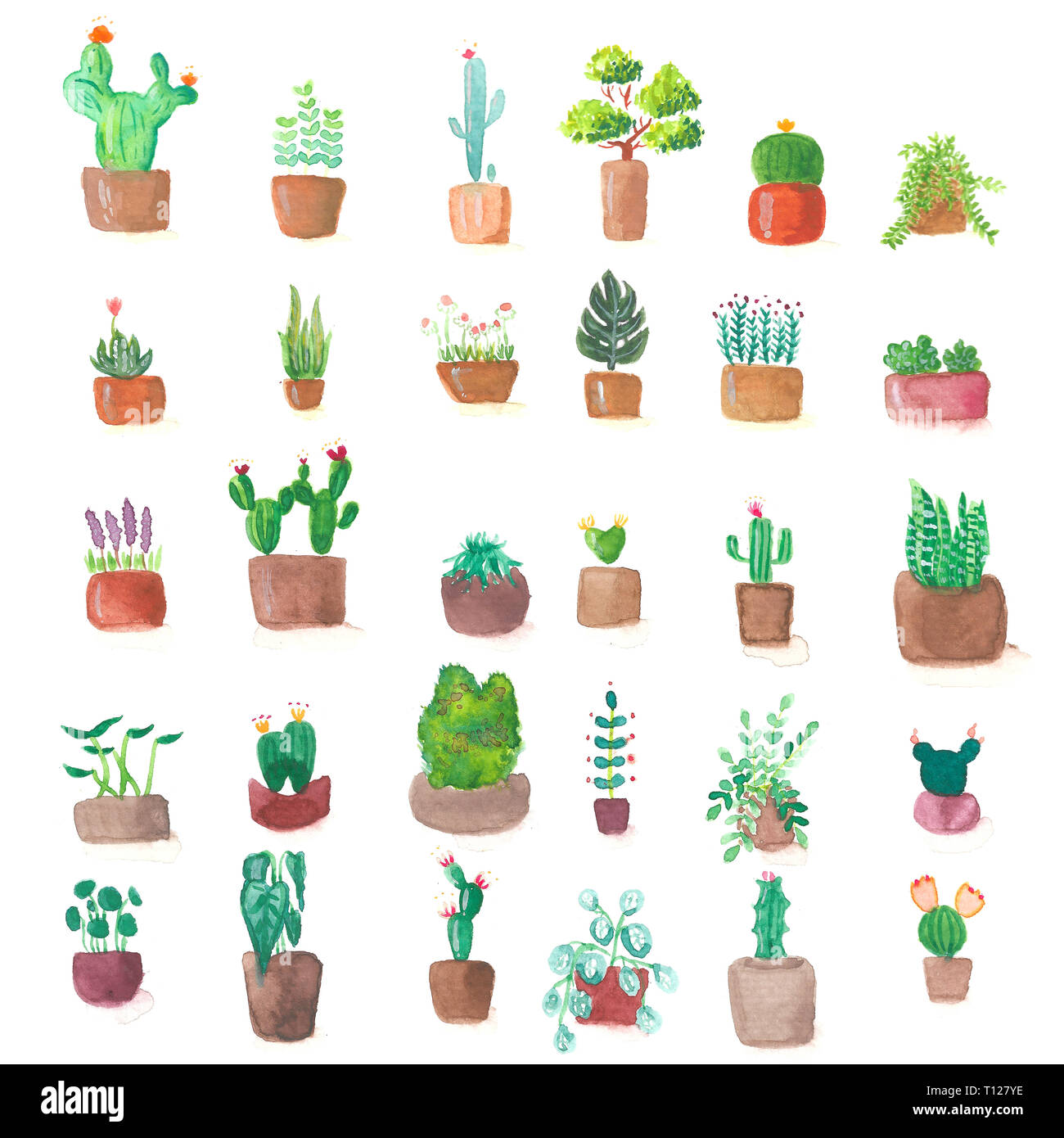 Small Cute Green Cactus Plant Pot Set Watercolor Paint Illustration Art Stock Photo Alamy