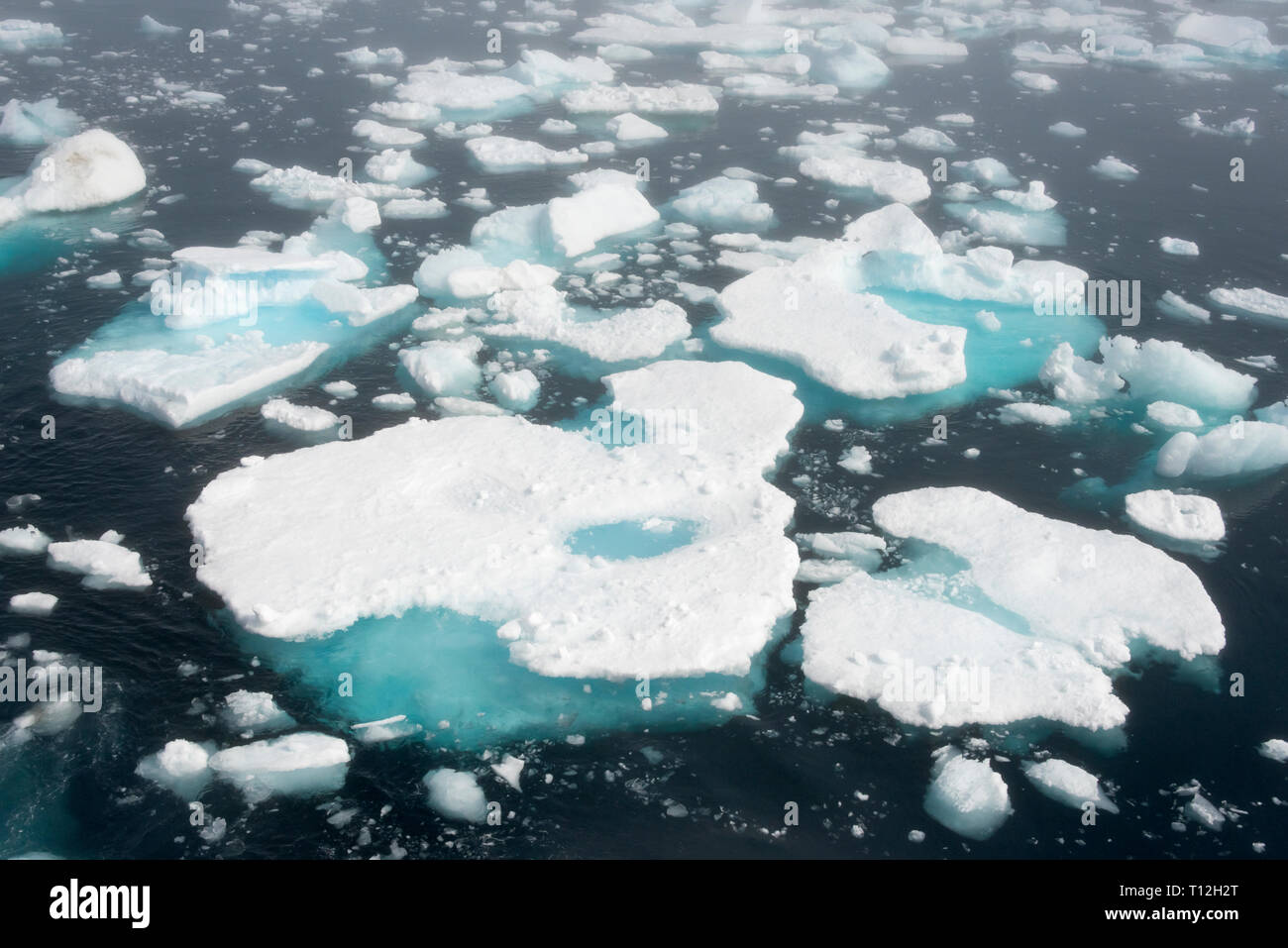Floating ice on the ocean in Prins Christian Sund, Greenland - Stock Image