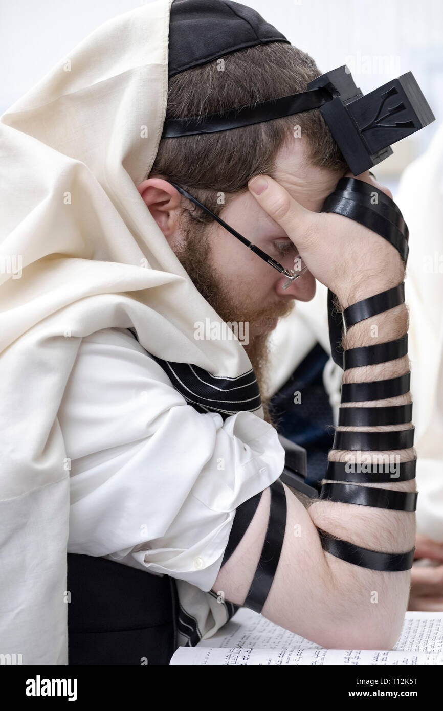A close up of an orthodox Jewish man wearing tefillin and a tallis at a synagogue in Cambria Heights, Queens, New York - Stock Image