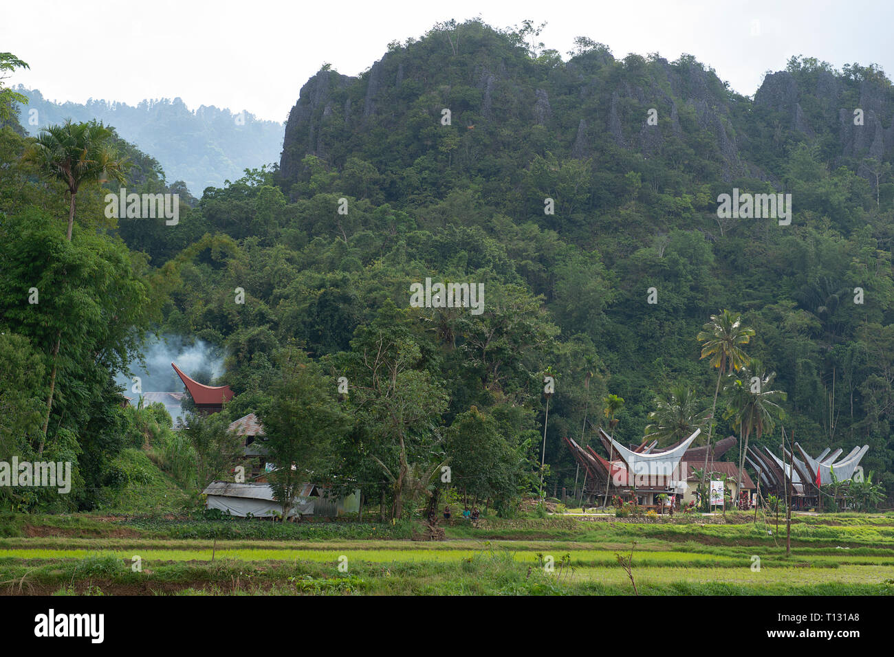 Tongkonan houses, traditional Torajan buildings, Tana Toraja is the traditional ancestral house of the Torajan people, in South Sulawesi,Indonesia. To - Stock Image