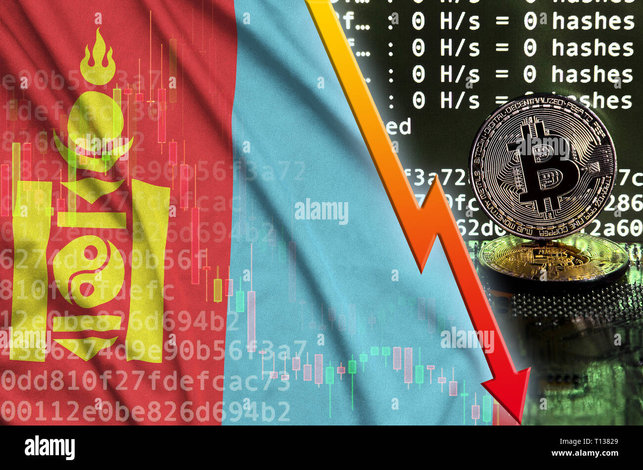 Mongolia flag and falling red arrow on bitcoin mining screen and two physical golden bitcoins. Concept of low conversion in cryptocurrency mining - Stock Image
