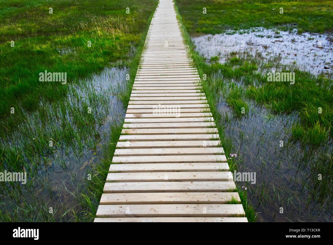 A plank pathway in Landmannalaugar, Iceland Stock Photo
