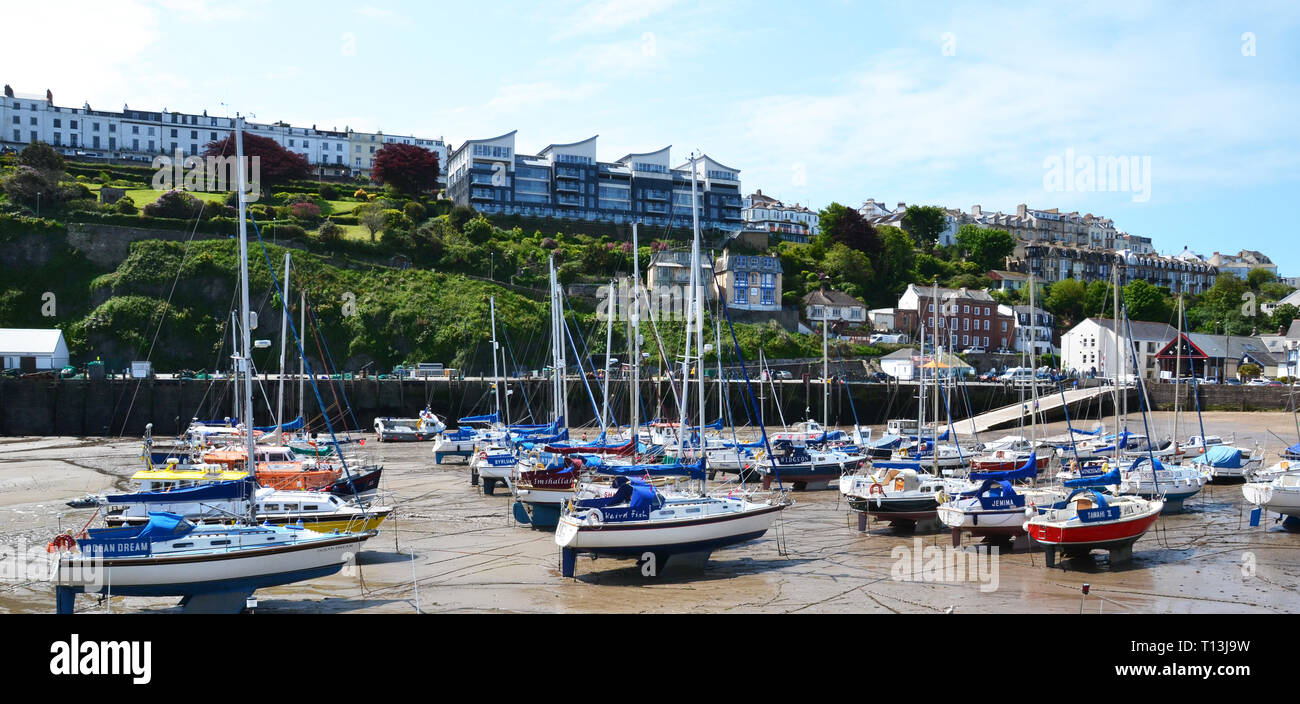 The Harbour at low tide, Ilfracombe, Devon, UK - Stock Image