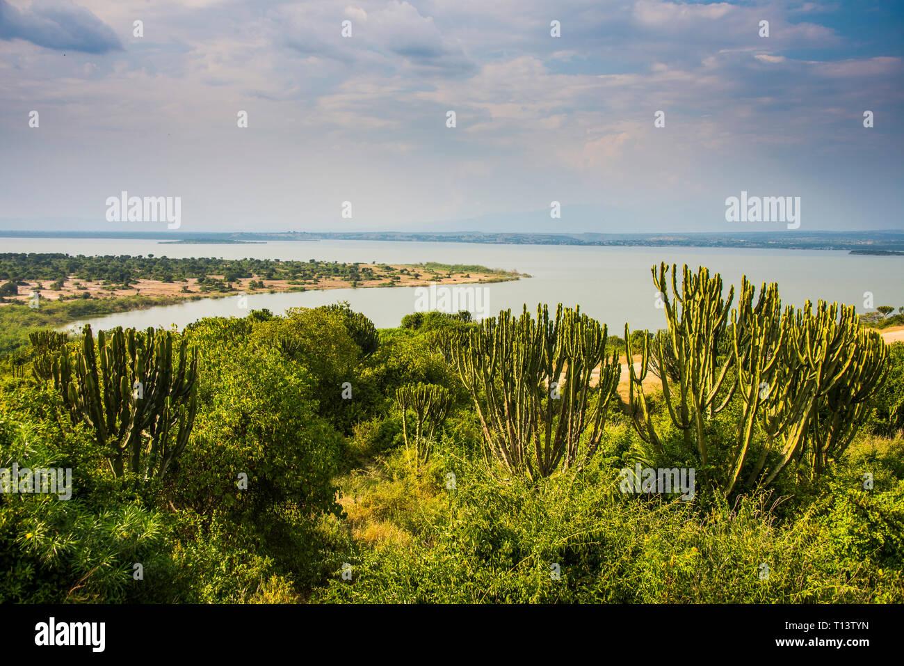 Africa, Uganda, Kazinga channel linking lake george and lake Edward, Queen Elizabeth National Park Stock Photo