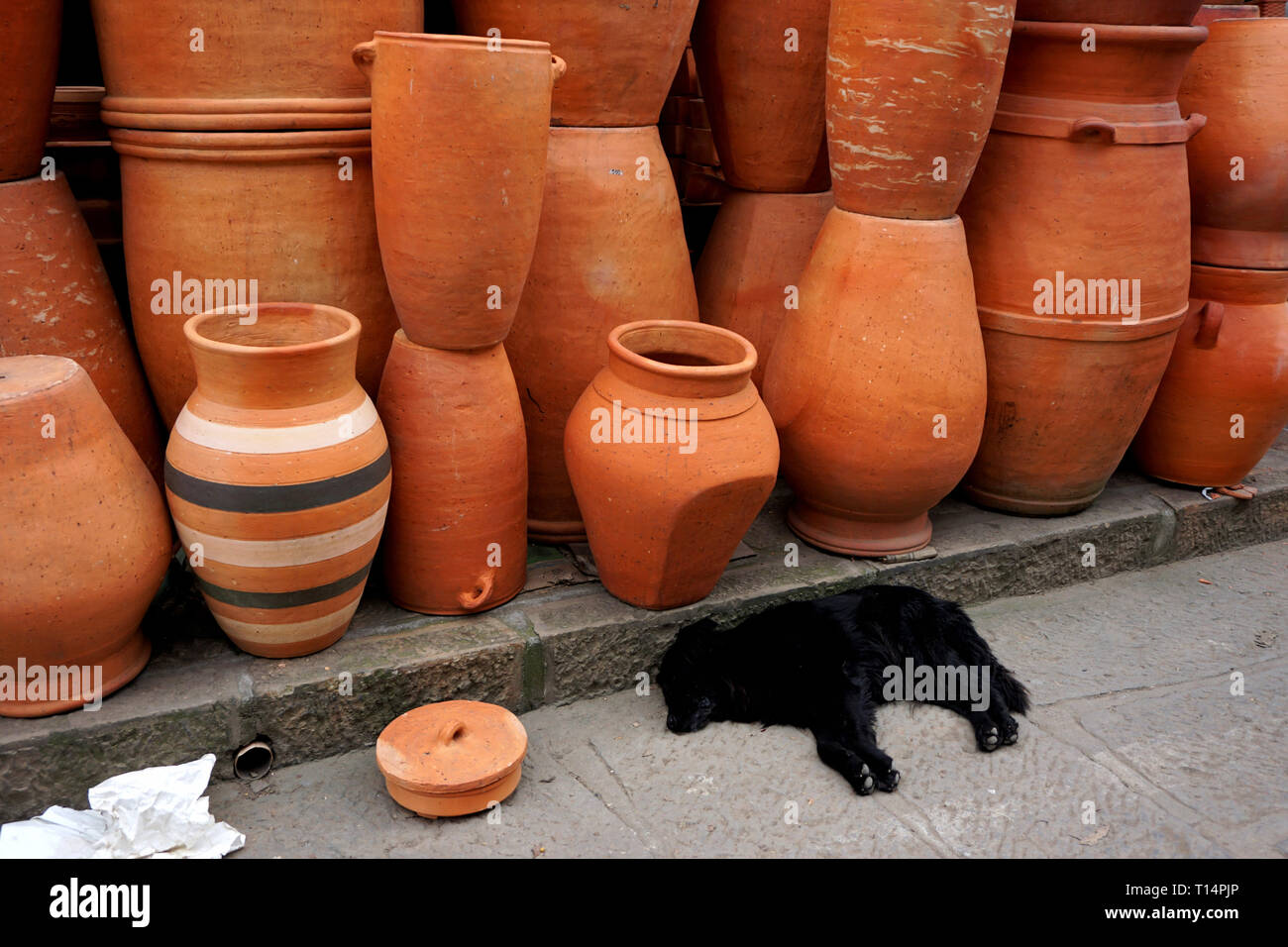 Black Dog asleep in Front of Earthenware outside a Store in Raquira, Colombia's Pottery Capital - Stock Image