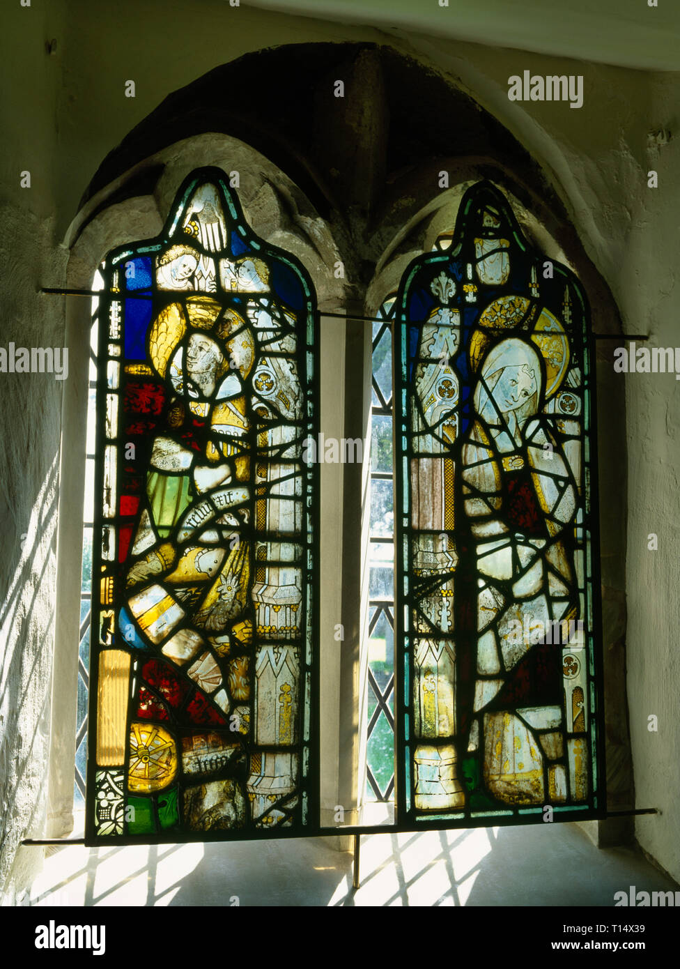 Panels of late Medieval (C15th) stained glass fragments removed from E window of Tremeirchion church, Wales, in 1858/9 & placed in the vestry windows - Stock Image