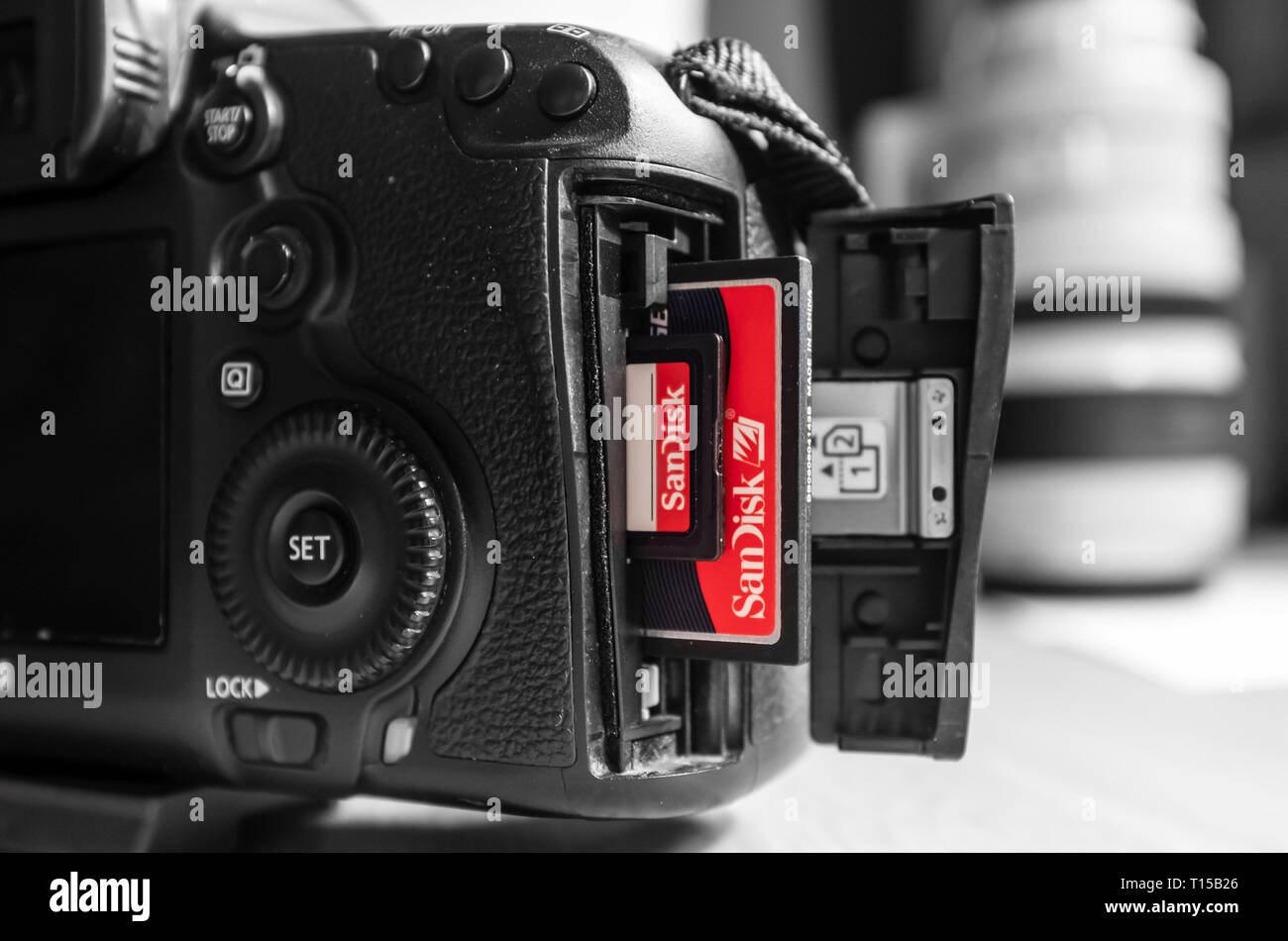UK - February 08, 2019. Sandisk SD and Compact Flash CF memory cards in a Canon camera slot. Sandisk is the leading brand of memory cards - Stock Image