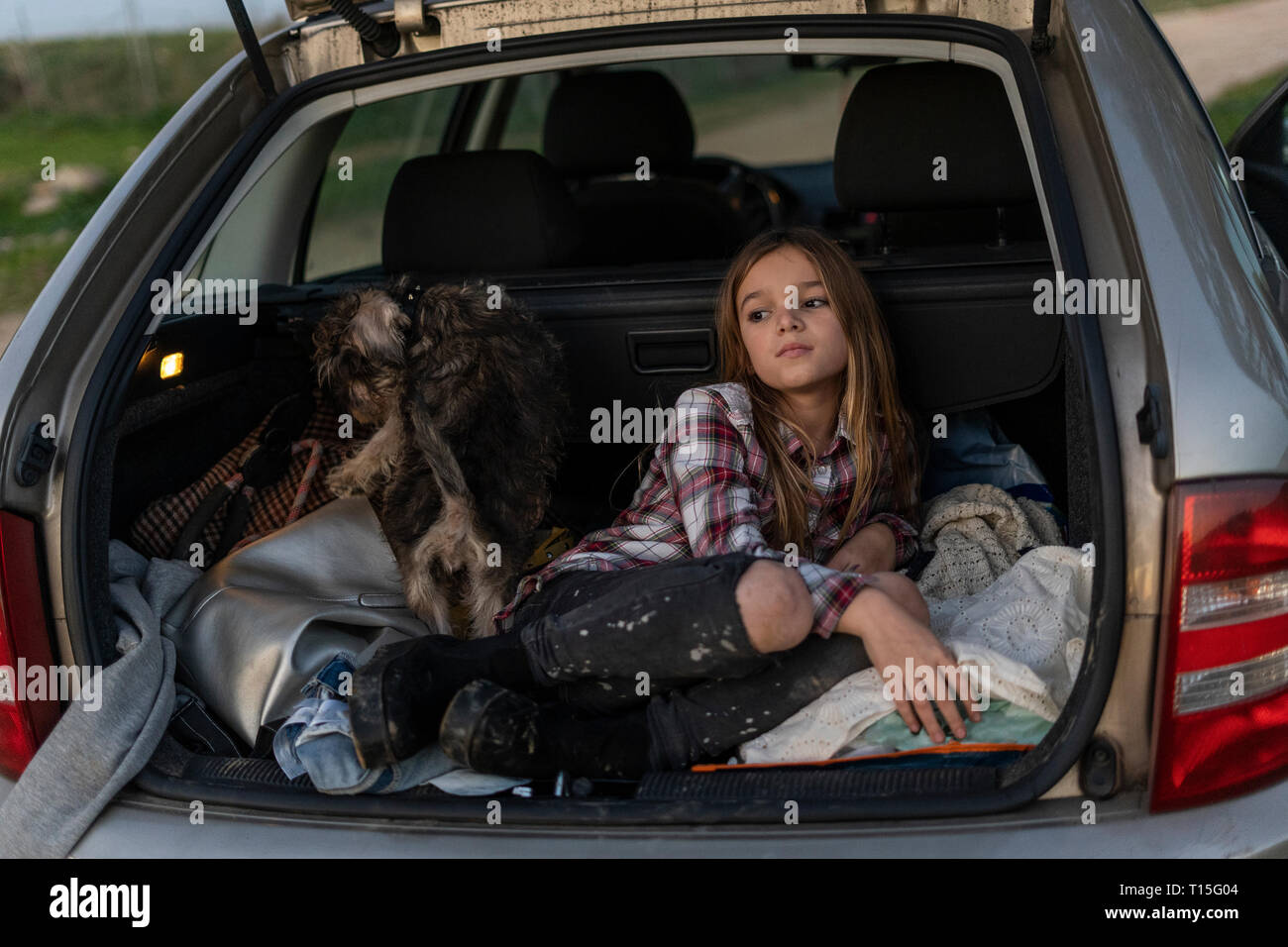 Girl waiting with her dog in parked car in the evening - Stock Image